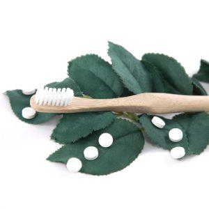 Bamboo Toothbrush Gogreen